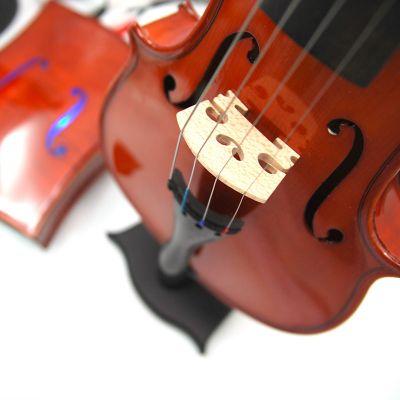 Violin Speaker - SOUNGER VIN